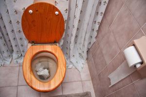 Toilette Verstopft-Reparatur